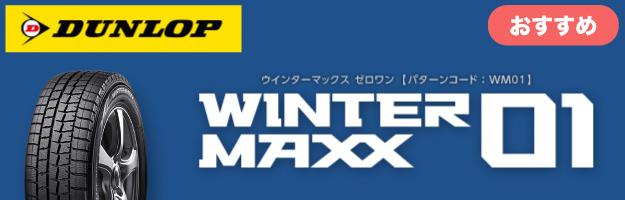 ウインターマックス01
