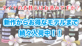 ノーマルタイヤ紹介ページ