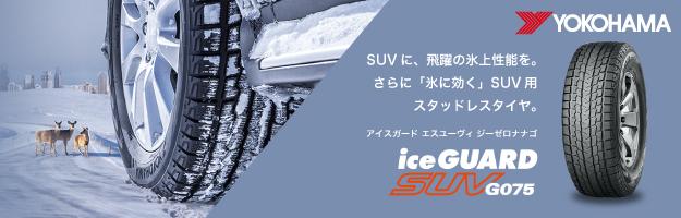 icegurdsuv